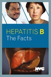Hep B The Facts Brochure